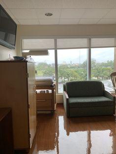 Miami, Windows, Curtains, Home Decor, Homemade Home Decor, Window, Interior Design, Home Interiors, Decoration Home