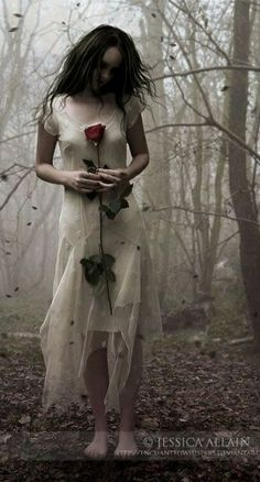 The Last Rose- in a world devoid of hope Gem had found a single rose, thought to have vanished from existence. She knew she had to keep it secret, hide it and care for it. The last proof on earth that somewhere there is someone still holding hope. Not all has been lost.