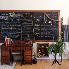 large chalkboard, fern, nature box & desk