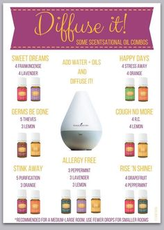 Learn about essential oils and other Young Living Products Young Essential Oils, Essential Oils Guide, Essential Oils Cleaning, Cedarwood Essential Oil Uses, Cedarwood Oil, Essential Oil Combinations, Aromatherapy Oils, Yl Oils, Essential Oil Diffuser Blends
