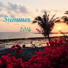 xxxxx Summer 2014, About Me Blog, Celestial, Sunset, Day, Movie Posters, Outdoor, Outdoors, Film Poster