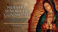 Un sábado de 1531 a principios de diciembre, un indio llamado Juan Diego, iba muy de madrugada del pueblo en que residía a la ciudad de México a asistir a sus clases de catecismo y a oír la Santa Misa. Al llegar junto al cerro llamado Tepeyac amanecía y escuchó una voz que lo llamaba por su nombre.
