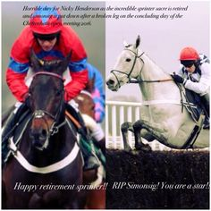 13/11/16 will be remembered in my mind as when my favourite racer was retired and a truly class horse was put to sleep in a horrid accident