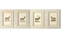 Deer Art | Vintage Wall Decor