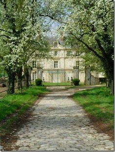 This is the kind of green I'd like to see in front of my house! Blooming trees, white walls, amazing house!
