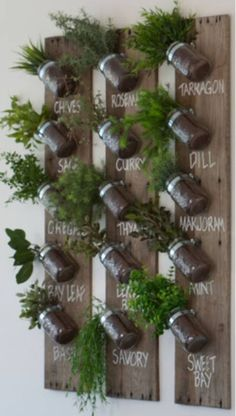 Even in winter we can still grow fresh herbs. In most regions the herb garden is now dormant, but with a little planning you can grow many culinary herbs indoors this winter. An indoor herb garden is not only functional,… Continue Reading → Vertical Garden Design, Vertical Gardens, Container Gardening, Gardening Tips, Organic Gardening, Indoor Gardening, Fairy Gardening, Gardening Quotes, Urban Gardening
