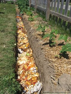 Compost trench...when I start my garden