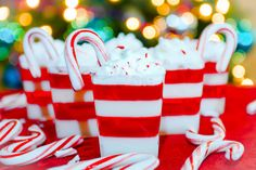 candy cane jello candy cane jello shots step candy cane jello shots ...