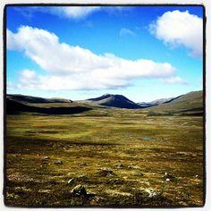 """@heidirode's photo: """"Utsikten fra kontoret i dag :-) #dovre #hjerkinn #norway #vakkert"""""""