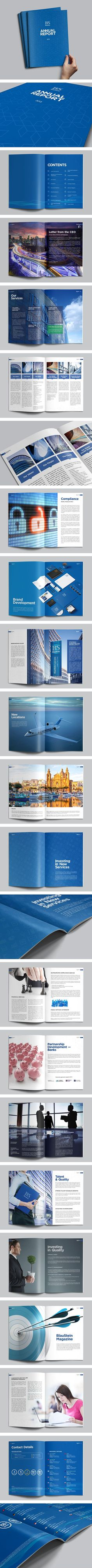 BlauStein Annual Report 2013 by Sergey Vasilev, via Behance:
