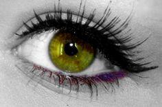 Google Image Result for http://www.deviantart.com/download/103926049/Rare_Eye_Color_by_ninakeks.png