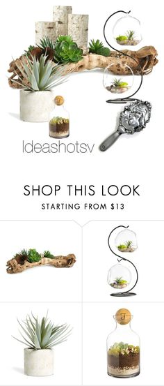 """""""Oasis"""" by lylena-barrenechea on Polyvore featuring interior, interiors, interior design, hogar, home decor, interior decorating, Home Decorators Collection, Allstate Floral y Cathy's Concepts"""