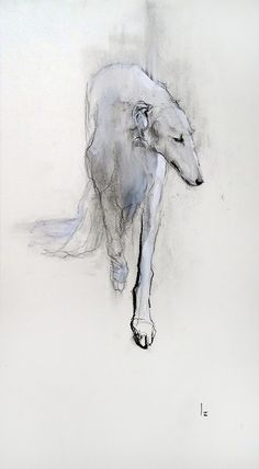 Borzoi+-さんぽみち makings of stylish right back piece Animal Paintings, Animal Drawings, Art Drawings, Dog Illustration, Illustrations, Art Aquarelle, Greyhound Art, Dog Portraits, Dog Art