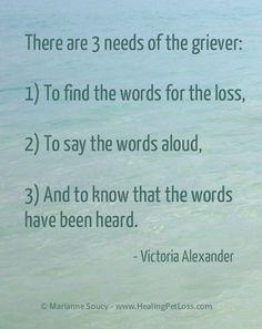 3 needs - grief