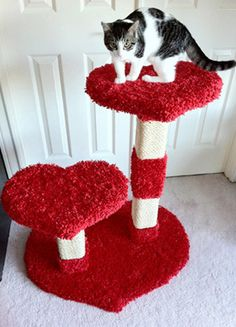 Cat Furniture, Cat Trees, Cat Condos, Cat Towers, Cat Tree Condos - NW Themed Cat Furniture Dog Tree, Diy Cat Tree, Cat Tree Condo, Cat Condo, Sushi Cat, Cat Towers, Fancy Cats, Cat Scratcher, Cat Decor
