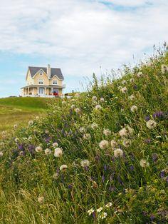 Il y a peu d'endroits aussi photogénique que les Îles de la Madeleine au Québec. Complètement à l'est du Canada, l'archipel cache des maisons colorées, des falaises orangées, des plages infinies et des couchers de soleil à couper le souffle. C'est vrai que c'est loin, mais c'est un incontournable pour un voyage au Canada. Ottawa, Bas Saint Laurent, Beautiful Homes, Beautiful Places, Happy Alone, Secret Hideaway, Nature Landscape, Photos Voyages, In The Tree