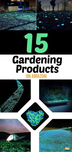 Keep Your Lawn Looking Fresh with These 15 Gardening Products on Amazon Amazon Home Decor, Gardening Gloves, Cool Tools, Lawn, How To Look Better, Floral Design, Fresh, Blog, Products