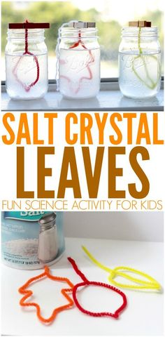 Crystal Leaves: Fall STEM Activity for Kids Salt Crystal Leaves - Love fall leaves? This seasonal twist on salt crystal science transforms autumn leaves into beautiful crystals. This is a simple yet fun STEM activity for kids!Twist Twist may refer to: Kid Science, Stem Science, Science Experiments Kids, Fall Preschool Science, Autumn Crafts Preschool, Science Chart, Science Centers, Science Week, Summer Science