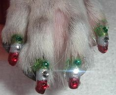 Weird Pet Trend Alert: Dog Nail Art - Yes This is a Thing.