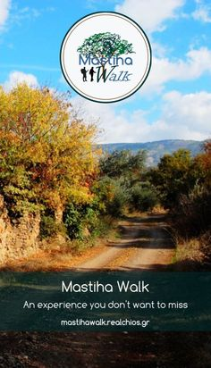 Walking tour and Outdoor activities in the magnificent Island of Chios, Greece. Mastiha walk, a Must-Do activity. Participate and unveil Real Chios on foot! Chios Greece, Walking Tour, Outdoor Activities, Country Roads, Tours, Island, Islands, Field Day Activities