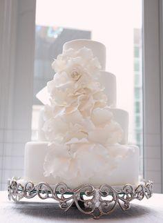 Amy Craparo cake designer.