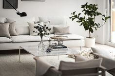 A New Interior Project by Design Therapy