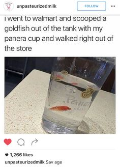 How to get a free goldfish 101