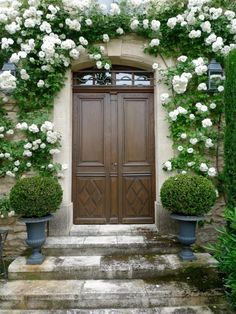 Google Image Result for http://www.thewriterandresidence.com/wp-content/uploads/2012/06/white-climbing-roses.jpg
