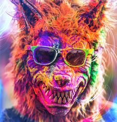 1000+ images about Festival of Colors