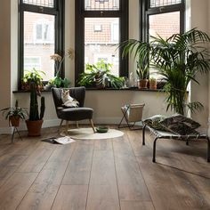 Urban jungle | Laminaat | Smaakvol gerookt rustiek eiken | Collectie Elegant | Douwes Dekker vloeren Living Room Themes, Living Room Modern, Home Living Room, Dark Brown Bedrooms, Floor Design, House Design, Drapes And Blinds, Home Decor Colors, Indian Homes