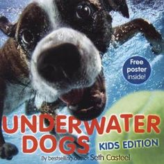 Enter to win a FREE copy of Underwater Dogs: Kids Edition by Seth Casteel - details inside our December newsletter!