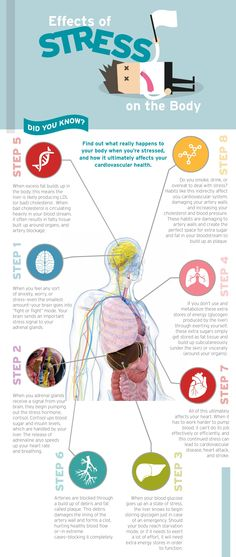 Effects of stress on the body. Stress less. Stop stress. Stress and anxiety Work Stress, Stress Less, Stress And Anxiety, Anxiety Quotes, Teachers, Wellness, Training, School, Chemistry