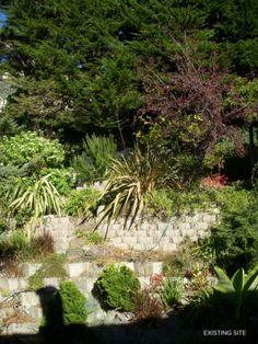 The Hilgard Garden Shows What Hills Can Do For A Garden