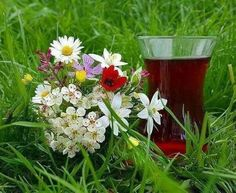Turkish Tea, Flower Tea, Insta Photo Ideas, Tumblr Photography, Coffee Drinks, Bellisima, Tea Time, Daisy, Glass