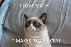 Grumpy Cat loves math  @Kara Lorraine you need to turn this into a poster for your room!