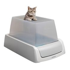 Top Entry Litter Box, Ikea Cat, Automatic Litter Box, Best Litter Box, Self Cleaning Litter Box, Cat Urine Remover, Litter Box Enclosure, Tidy Cats, Pet Safe