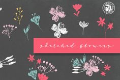 We present you free sketched flower today! This set of floral vector comes as separated flowers and bouquets. All the files are available