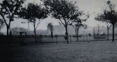 Shadwell park East London, Back In The Day, Italy, Park, Photos, Painting, Italia, Pictures, Painting Art