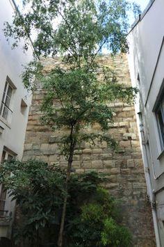 62 rue du Cardinal Lemoine (5e) - Enceinte de Philippe Auguste.
