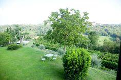 Giardino Plants, Plant, Planting, Planets