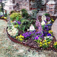Springbulbsandflowers reubens lawn care how to plant spring springbulbsandflowers reubens lawn care how to plant spring flower bulbs gardening yard pinterest spring flowers spring bulbs and lawn care mightylinksfo