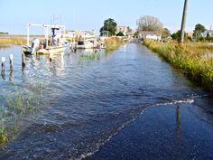 Virginia Island, Water Flood, In Plan, Tangier, Chesapeake Bay, Boat, Dinghy, Boats, Ship