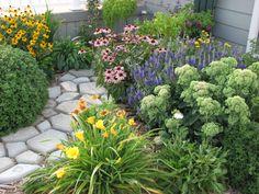 My flowers:  mum, yellow black-eyed susan, pink coneflower, purple speedwell, sedum, yellow and orange gallardia, yellow daylily, white shasta daisy.