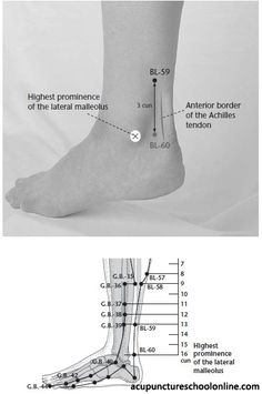 Instep Yang FUYANG - Acupuncture Points] On the lateral aspect of the lower leg, 3 cun superior to (in the depression between the highest prominence of the lateral malleolus and the Achilles tendon). Acupuncture Points Chart, Reflexology Points, Acupressure Points, Acupressure Treatment, Trigger Point Massage, Acupressure Therapy, Scoliosis Exercises, Alternative Therapies, Physical Therapy