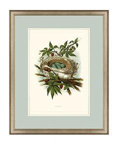 Art Source Nest Print II, Multi