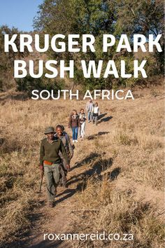 Taking a guided bush walk during a safari in Kruger National Park, South Africa