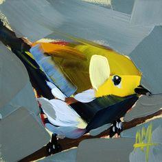 black throated warbler