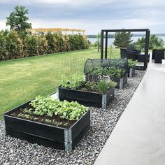 Raised Garden Beds Ideas — Photos) The Best landscape Design Vege Garden Ideas, Backyard Vegetable Gardens, Veg Garden, Vegetable Garden Design, Outdoor Gardens, Pallets Garden, Raised Garden Beds, Garden Planning, Backyard Landscaping