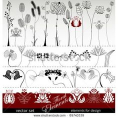 Herbs` stock photography, related keywords and colors
