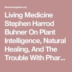Living Medicine Stephen Harrod Buhner On Plant Intelligence, Natural Healing, And The Trouble With Pharmaceuticals
